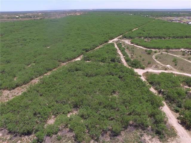 TBD El Pinto Road, Sullivan City, TX 78595 (MLS #333439) :: Realty Executives Rio Grande Valley