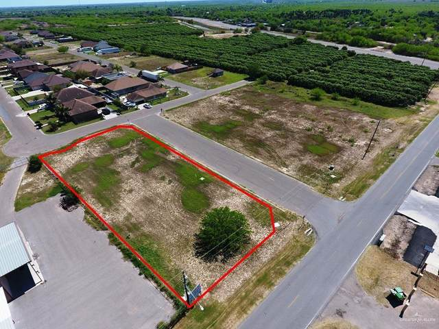 1011 Showers Road, Palmview, TX 78572 (MLS #333460) :: Realty Executives Rio Grande Valley