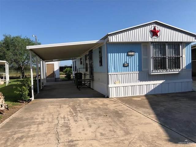 333 Butia Palms Drive, Alamo, TX 78516 (MLS #333844) :: The Ryan & Brian Real Estate Team