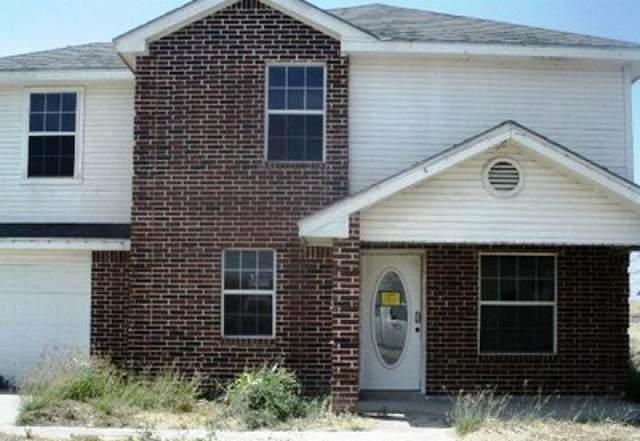 4035 W Us Highway 83, Rio Grande City, TX 78582 (MLS #335810) :: eReal Estate Depot