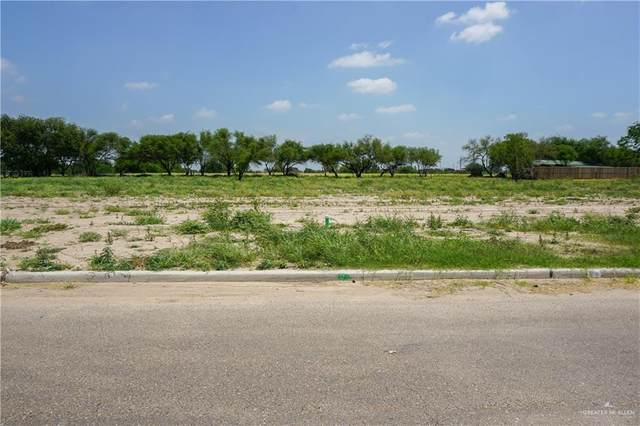 1602 Esperanza Avenue, Mission, TX 78572 (MLS #337488) :: The Maggie Harris Team