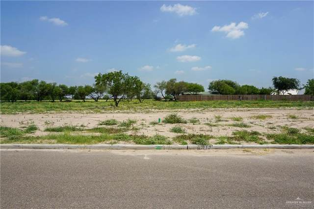 1516 Esperanza Avenue, Mission, TX 78572 (MLS #337492) :: Realty Executives Rio Grande Valley