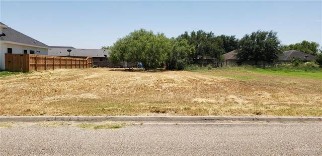 0 Carolina Avenue, Edinburg, TX 78541 (MLS #337654) :: eReal Estate Depot