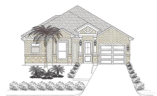 1412 Alta Vista Street, Weslaco, TX 78596 (MLS #337914) :: BIG Realty