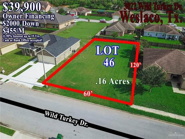 3022 Wild Turkey Drive, Weslaco, TX 78596 (MLS #339499) :: eReal Estate Depot