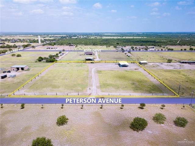 103 Peterson Avenue, Rio Grande City, TX 78582 (MLS #341808) :: The Ryan & Brian Real Estate Team
