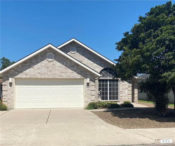 222 Diana Drive, Alamo, TX 78516 (MLS #343373) :: Realty Executives Rio Grande Valley