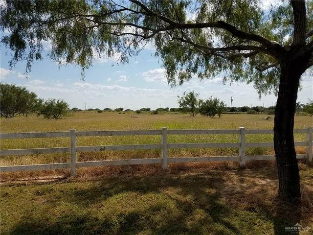 00 Buck Fawn Drive, Edinburg, TX 78542 (MLS #343745) :: eReal Estate Depot