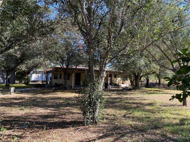 22005 Lane Road, Edinburg, TX 78539 (MLS #345773) :: Jinks Realty