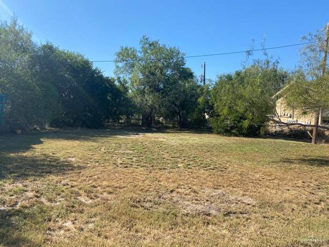 TBD 4th Street, Edinburg, TX 78539 (MLS #346070) :: eReal Estate Depot