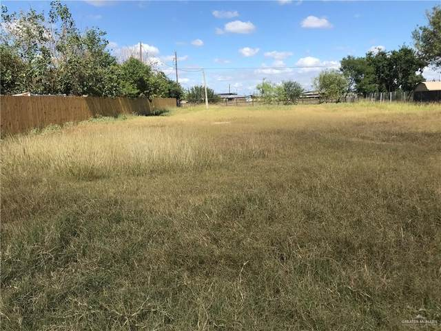 919 Road Runner Street, Donna, TX 78537 (MLS #346271) :: Jinks Realty