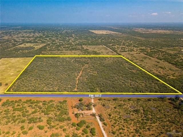 0 E Fm 1017, San Isidro, TX 78588 (MLS #346317) :: Imperio Real Estate