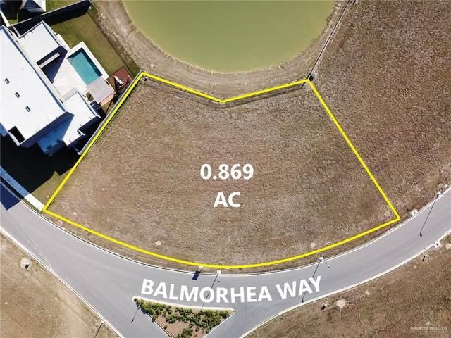 4601 Balmorhea, Mcallen, TX 78504 (MLS #347598) :: API Real Estate