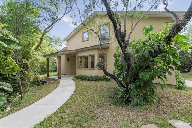 2341 Roel Bazan Street, Edinburg, TX 78541 (MLS #347604) :: Jinks Realty