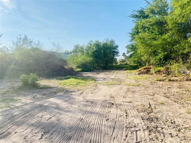 3805 Cenizo Street, Mission, TX 78574 (MLS #347938) :: eReal Estate Depot