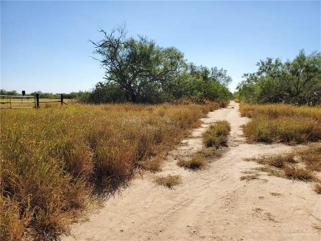 00 N Pipeline Road, Sullivan City, TX 78595 (MLS #348011) :: eReal Estate Depot