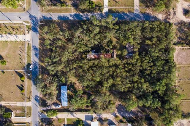 904 Cactus Lane, Edinburg, TX 78541 (MLS #348330) :: The Ryan & Brian Real Estate Team