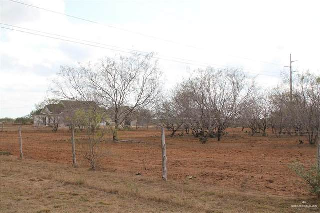 24981 Rio Colorado Road, Edinburg, TX 78563 (MLS #348565) :: eReal Estate Depot