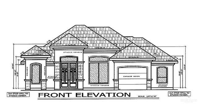140 Spanish Oak Drive, Alamo, TX 78516 (MLS #349033) :: The Ryan & Brian Real Estate Team