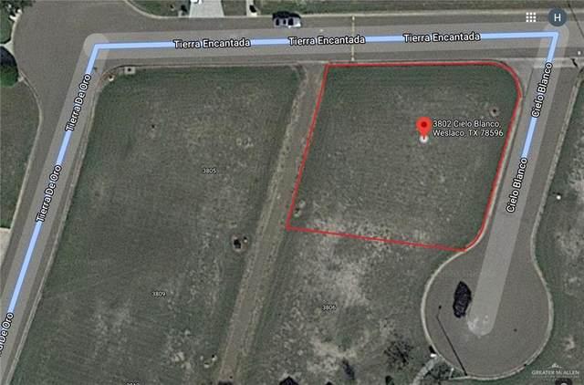 3802 Cielo Blanco, Weslaco, TX 78596 (MLS #349070) :: The Ryan & Brian Real Estate Team