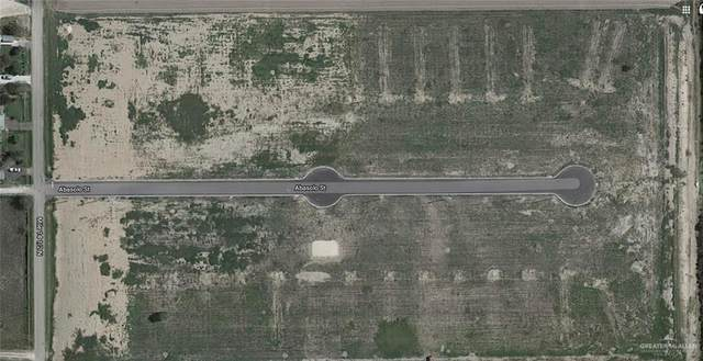 Lot 11 Abasolo Street, Donna, TX 78537 (MLS #349389) :: The MBTeam