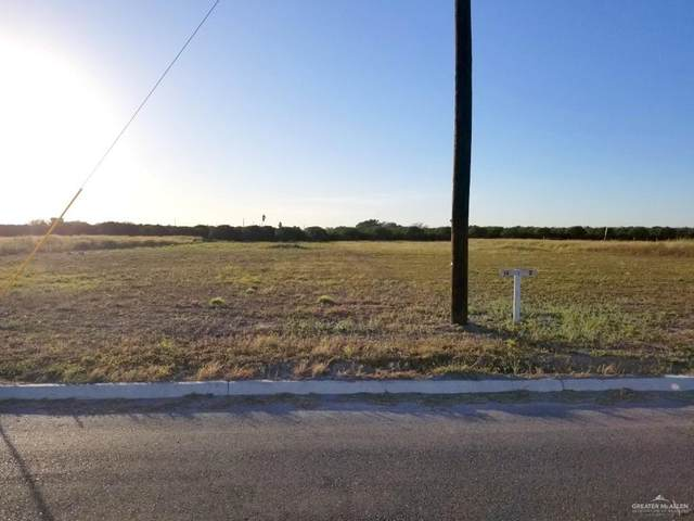 Lot 14 Abasolo Street, Donna, TX 78537 (MLS #349418) :: The MBTeam