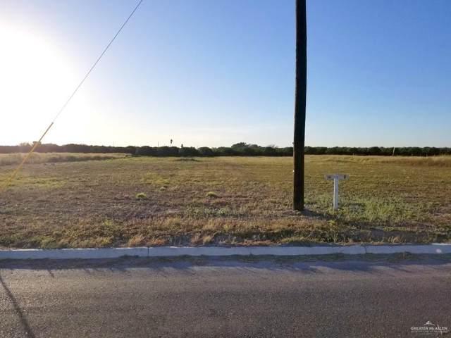 Lot 14 Abasolo Street, Donna, TX 78537 (MLS #349418) :: Key Realty