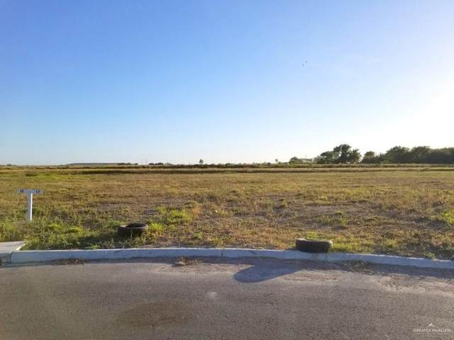 Lot 17 Abasolo Street, Donna, TX 78537 (MLS #349423) :: The MBTeam