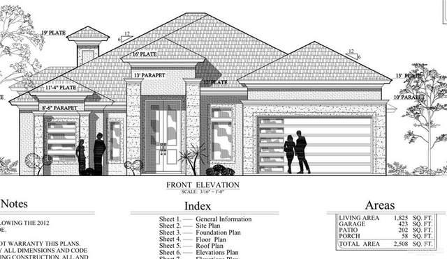 1801 Lago Delton Street, Edinburg, TX 78539 (MLS #350513) :: The Ryan & Brian Real Estate Team
