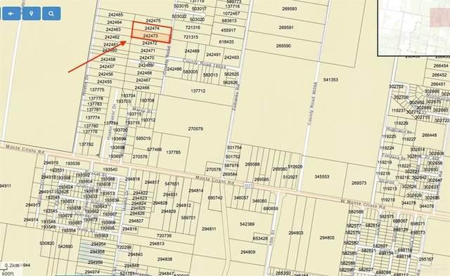 000 Citrus Drive, Edinburg, TX 78541 (MLS #350866) :: The Lucas Sanchez Real Estate Team