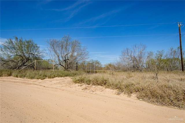 Lot 16 Las Brisas Road, Rio Grande City, TX 78582 (MLS #351007) :: Key Realty