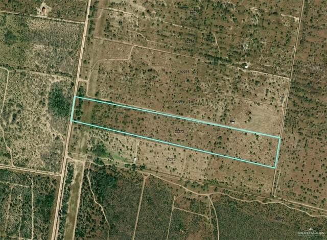 2 Las Brisas, Rio Grande City, TX 78582 (MLS #352596) :: eReal Estate Depot