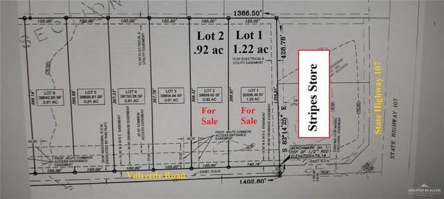 163 S Val Verde Road, Edinburg, TX 78539 (MLS #353095) :: The MBTeam
