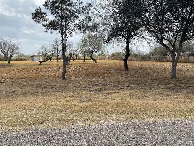 1717 Cheril Road, Mission, TX 78573 (MLS #353261) :: Jinks Realty