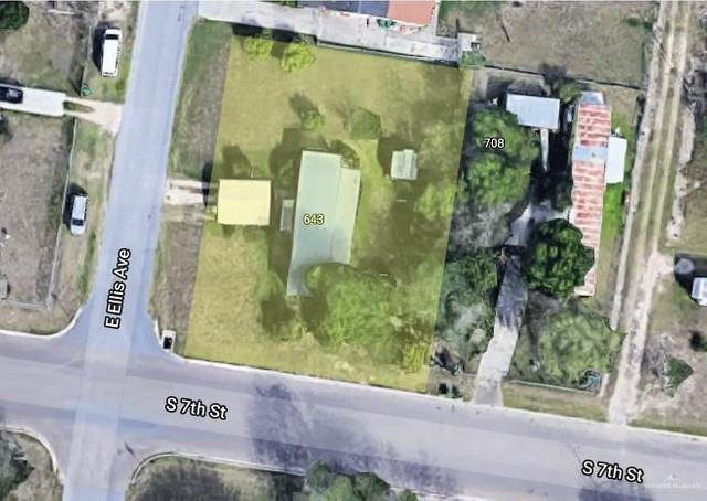 643 Ellis Drive, Alamo, TX 78516 (MLS #353286) :: The Lucas Sanchez Real Estate Team