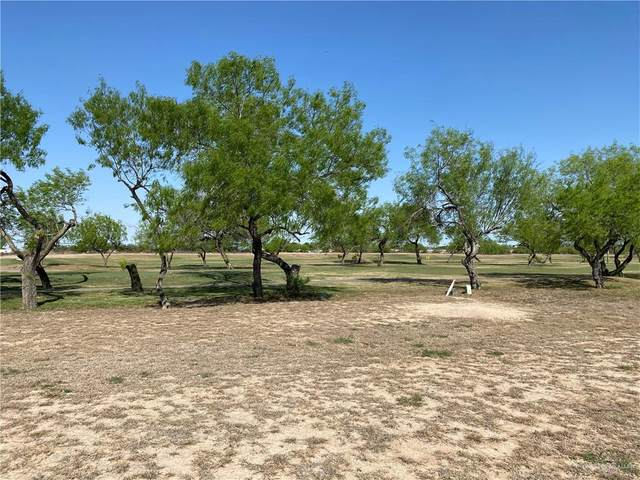 2508 S Rhett Drive, Pharr, TX 78577 (MLS #353402) :: Jinks Realty