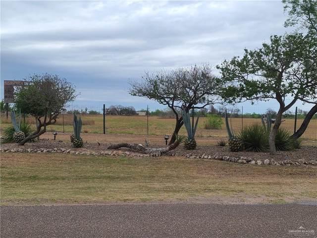 20703 Los Venados Drive, Edinburg, TX 78542 (MLS #354759) :: The Lucas Sanchez Real Estate Team