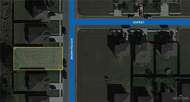 0 Brown Pelican Lane, Harlingen, TX 78552 (MLS #355552) :: The MBTeam