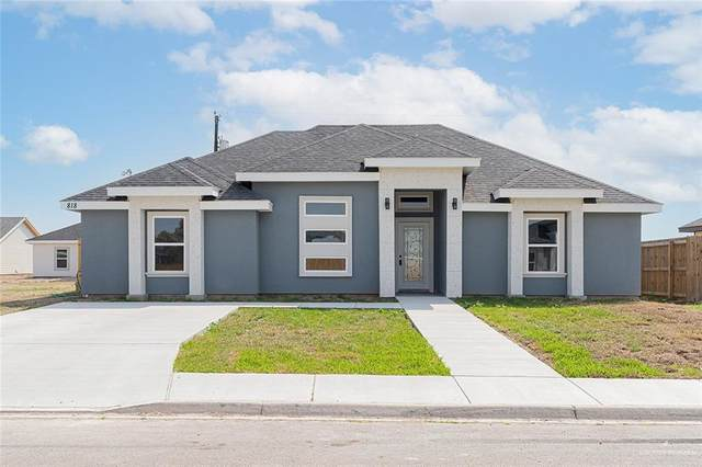 825 Dove Street, Alamo, TX 78516 (MLS #355730) :: Key Realty