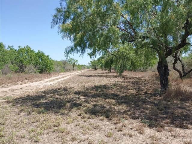 00000 N Mile 7 North, Penitas, TX 78576 (MLS #355885) :: eReal Estate Depot