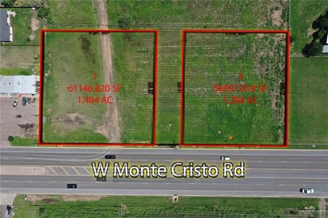 707 W Monte Cristo, Edinburg, TX 78541 (MLS #357659) :: Imperio Real Estate