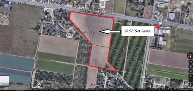 00 Fm 495, Alamo, TX 78589 (MLS #358526) :: Imperio Real Estate