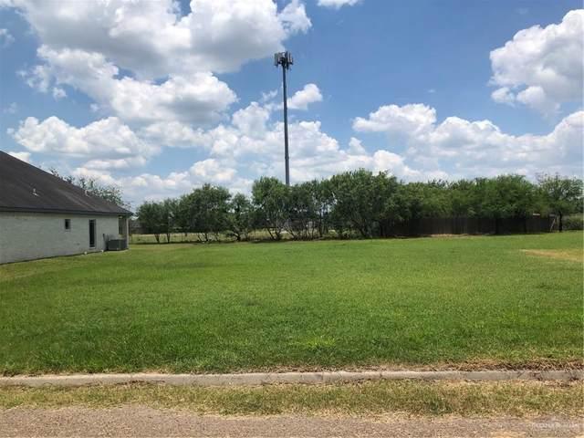 1407 Carolina, Edinburg, TX 78541 (MLS #359644) :: Imperio Real Estate