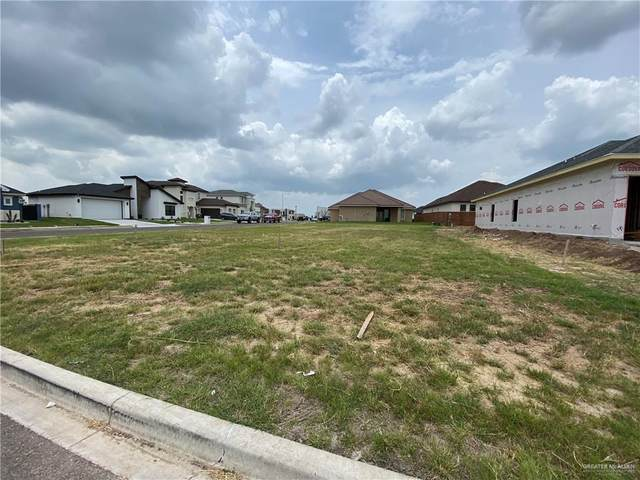 3101 Lago Ontario, Edinburg, TX 78542 (MLS #359825) :: eReal Estate Depot