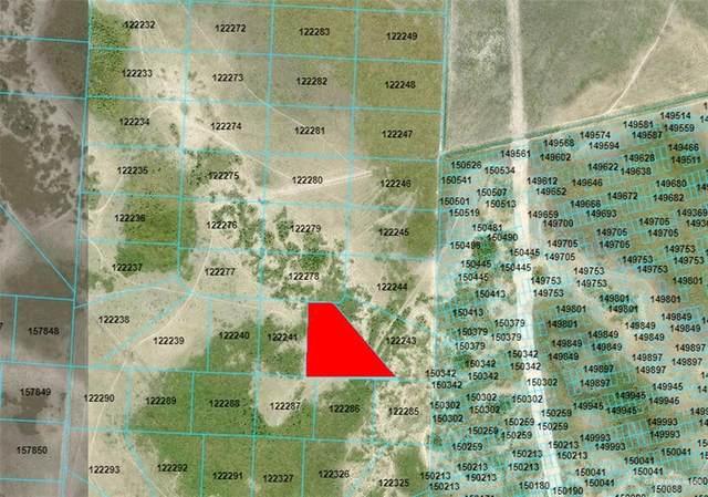 000 Old Port Isabel, Brownsville, TX 78526 (MLS #360040) :: API Real Estate