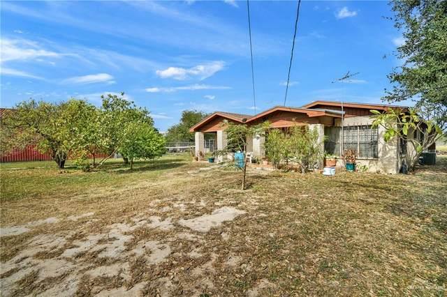 766 W Palma Vista, Palmview, TX 78572 (MLS #360199) :: API Real Estate