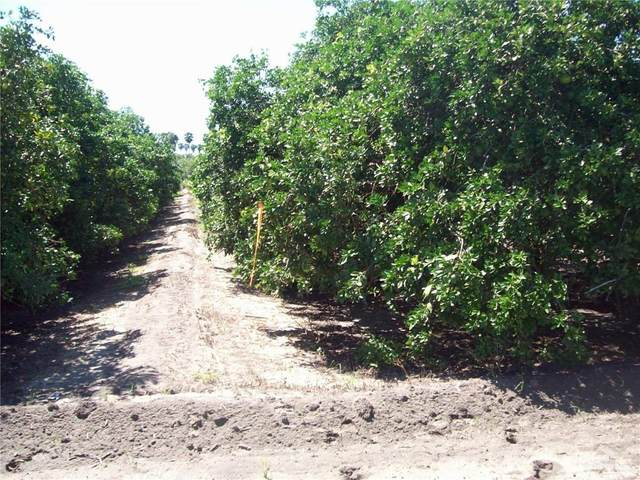 TBD N White Ranch, La Feria, TX 78559 (MLS #360303) :: The MBTeam