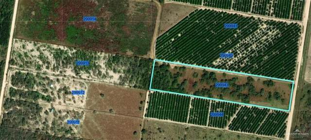 000 Abram, Mission, TX 78572 (MLS #360314) :: API Real Estate
