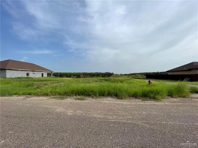 3523 Ida, Palmview, TX 78572 (MLS #360573) :: The MBTeam