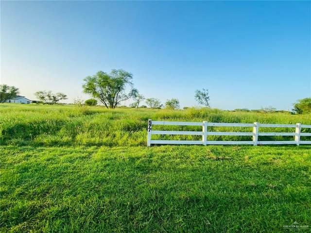 00 Buck Fawn, Edinburg, TX 78539 (MLS #362295) :: eReal Estate Depot